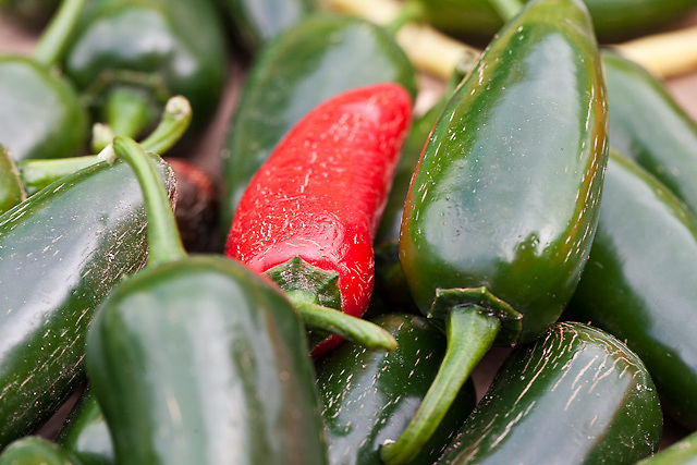 red and green hot Jalapeno chili peppers.