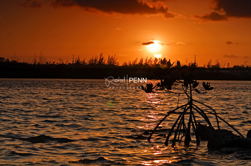 Fine Art Photography - The Bahamian Seascape