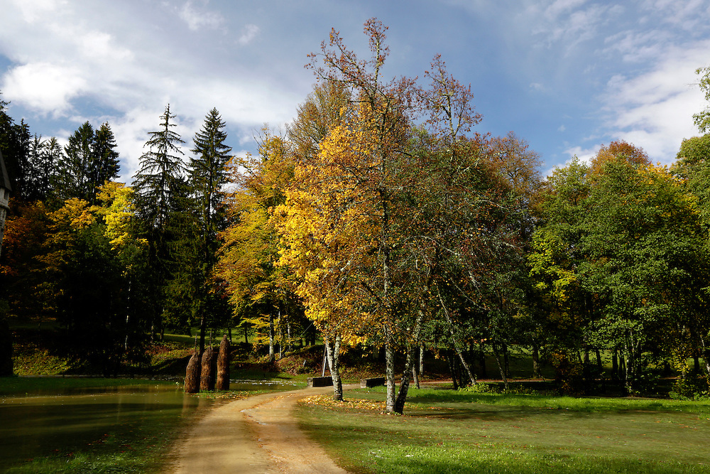 Autumn trees in front of Grad Sneznik, Slovenia.