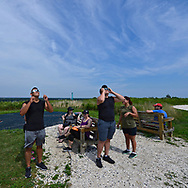 Merrick, New York, USA. August 21, 2017. Using solar glasses they borrowed, two young men frm Plainview, NY, are observing the early part of the partial Solar Eclilpse at Norman J Levy Park and Preserve. Many people who came to the  hilltop marshland, which is the highest point on the South Shore of Long island, didn't have solar glasses, but other visitors, strangers, offered to share the special safety filter glasses during the 2 1/2 hours from the very start to end of the partial solar eclipse.