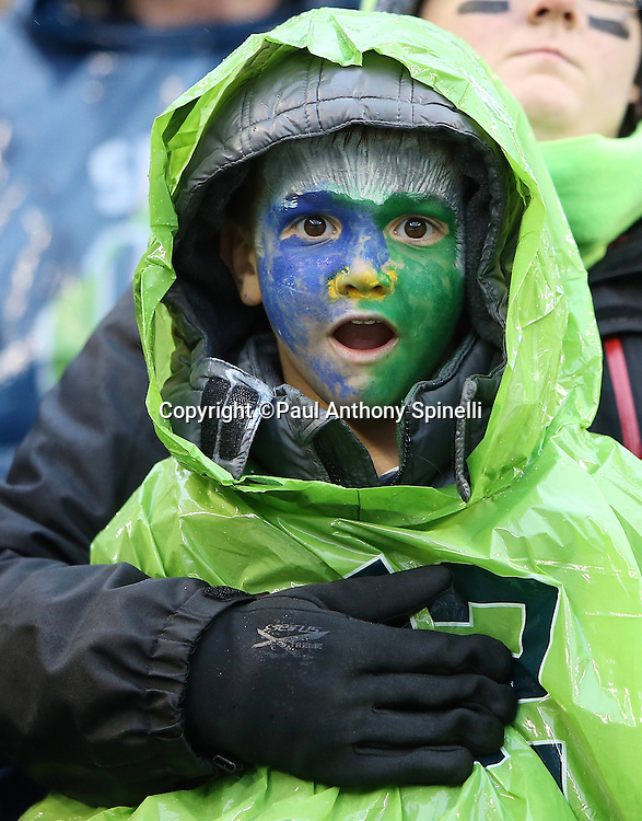 A young Seattle Seahawks fan with a painted face has a look of concern during the Seattle Seahawks 2015 NFL week 16 regular season football game against the St. Louis Rams on Sunday, Dec. 27, 2015 in Seattle. The Rams won the game 23-17. (©Paul Anthony Spinelli)