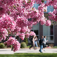 Campus scenes, Spring 2016, Photo Patrick Sweeney