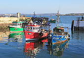 Cork city and County Cork, Ireland+Cape Clear Island