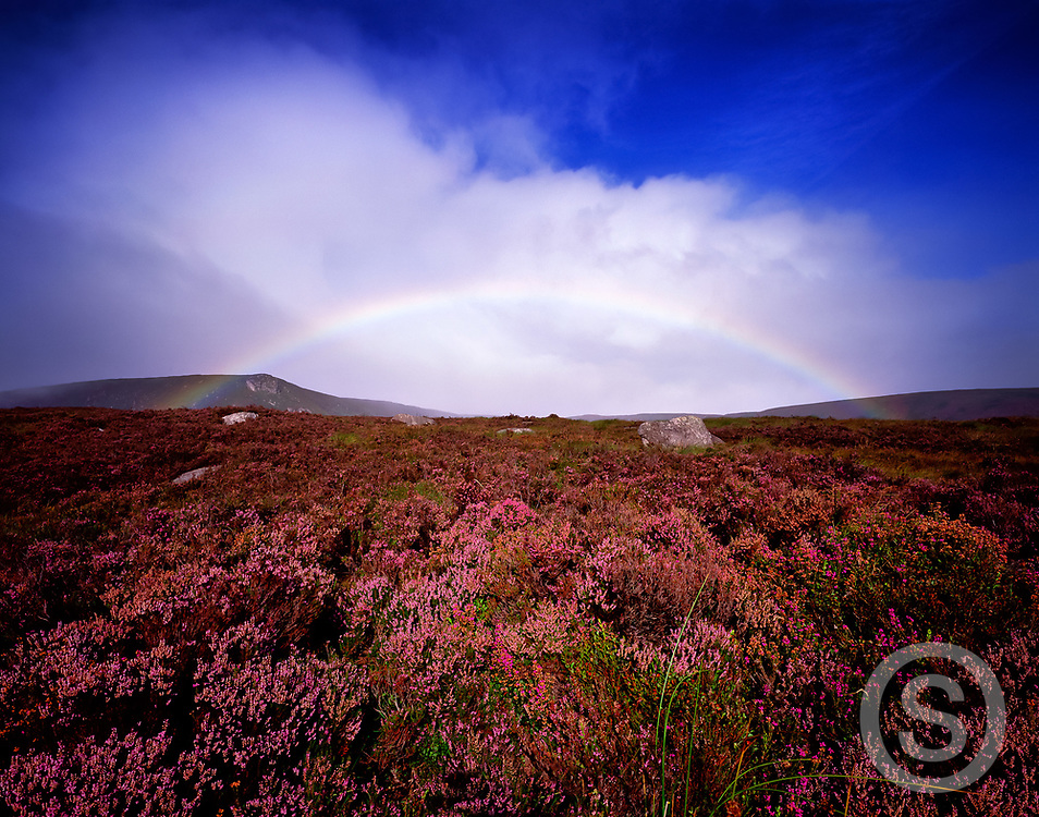Photographer: Chris Hill, Wicklow Mountains