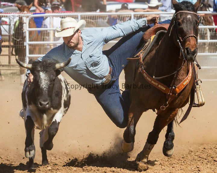 JOHN FRUIHT, of Santa Rosa, competes in the steer wrestling competition during the 2015 La Grange Rodeo in La Grange, California, on Sunday, March 29, 2015. His time of 8.7 seconds was not enough to earn him the win.