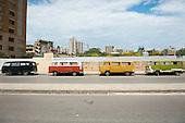 buses+