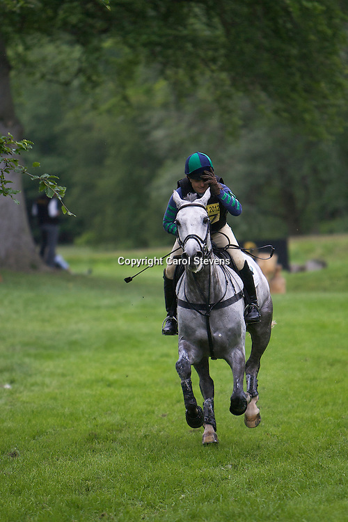 Equi-Trek Bramham International Horse Trials 2012  CIC3*<br />