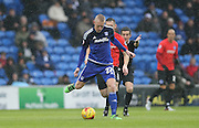 Cardiff City striker, Lex Immers (27) during the Sky Bet Championship match between Cardiff City and Brighton and Hove Albion at the Cardiff City Stadium, Cardiff, Wales on 20 February 2016.