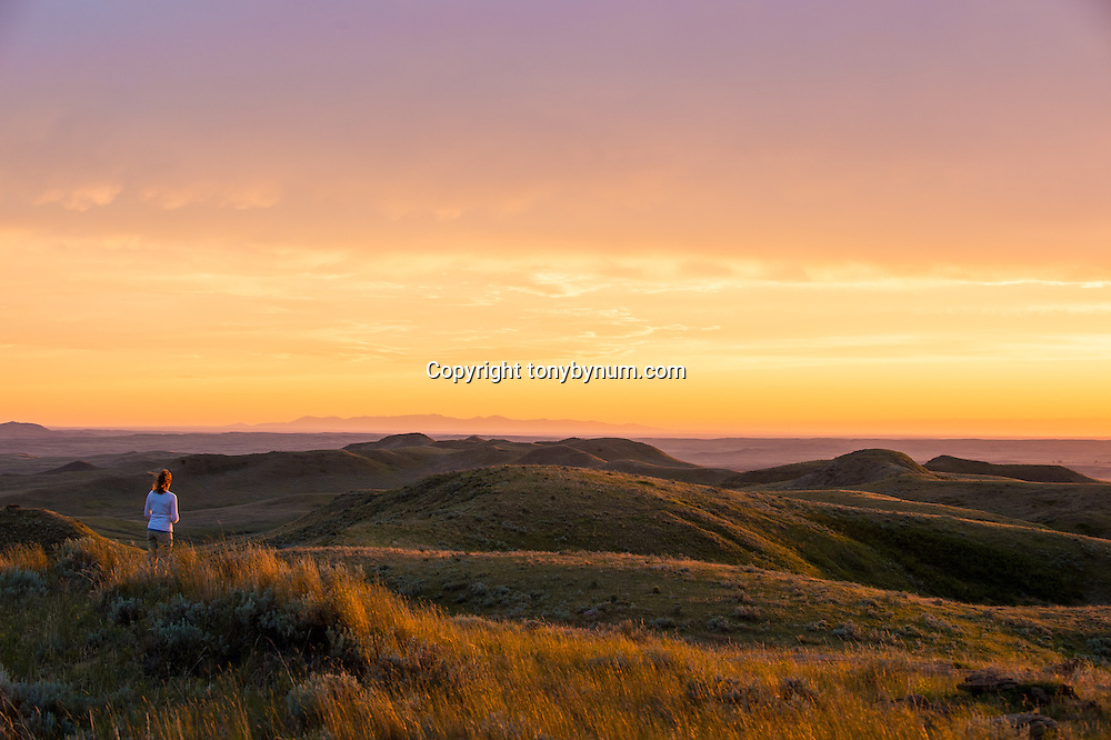 warm sunset on the prairie woman watching sun go down valley county montana