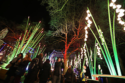 © Licensed to London News Pictures. 14/01/2016. London, UK. The Garden of Light installation fills Leicester Square. Lumiere London is a major new light festival that, over four evenings, brings together<br />