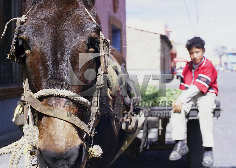 Metepec, Méx.- La carreta y el burro, medio para transportar hierbas y legumbres aun utilizado en Metepec. Agencia MVT / Daniela Bojorquez