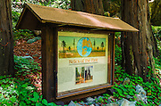 Interpretive sign, Lime Kiln State Park, Big Sur, California USA