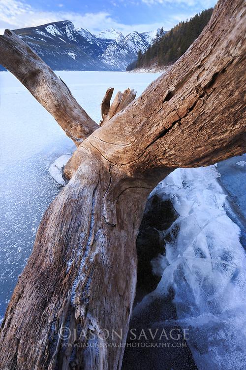 Ice takes over at Lake Como, Montana.