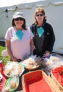 From left, Emily Sippel and Dee Ann Smith sell cookies during Kite Day Sunday April 24, 2016 at the Fonthill Museum in Doylestown, Pennsylvania. (Photo by William Thomas Cain/Cain Images)