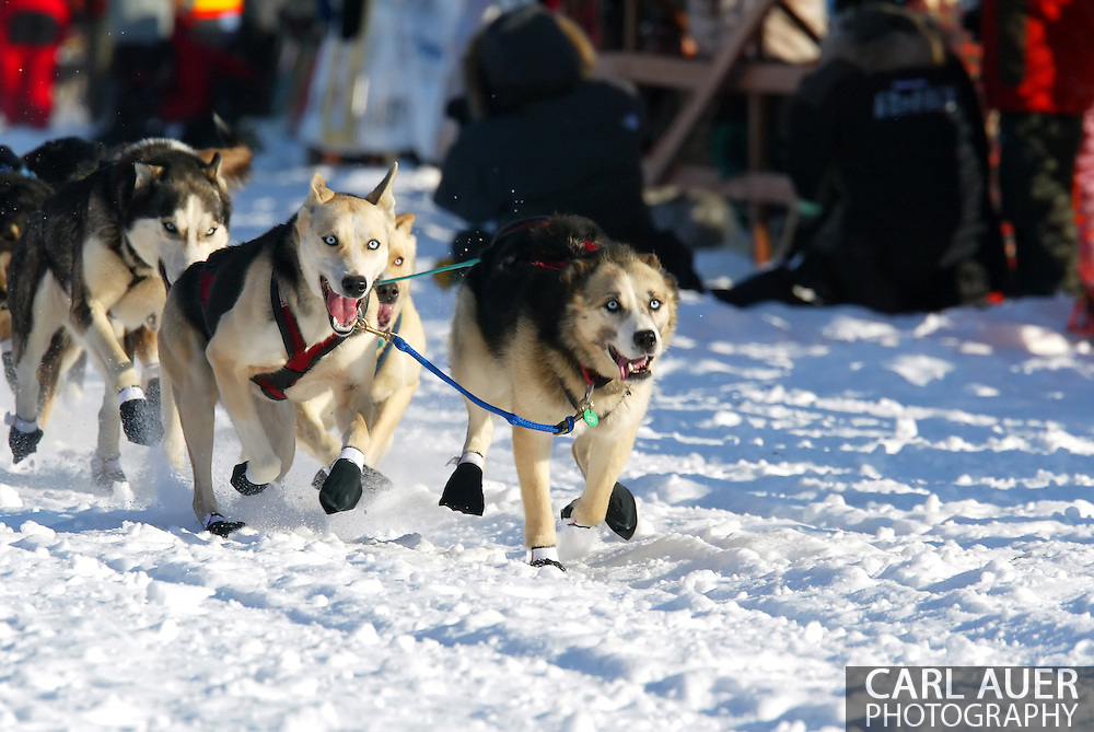 3/4/2007:  Willow, Alaska -  The eyes of the lead dogs for Rookie Bruce Linton of Morrisville, VT are deep in concentration as they start the 35th Iditarod Sled Dog Race