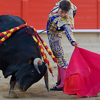Torreador fights against the bull in the arena Plaza del Toros Monumental in Barcelona, Spain. Sunday, 04. May 2008. ATTILA VOLGYI