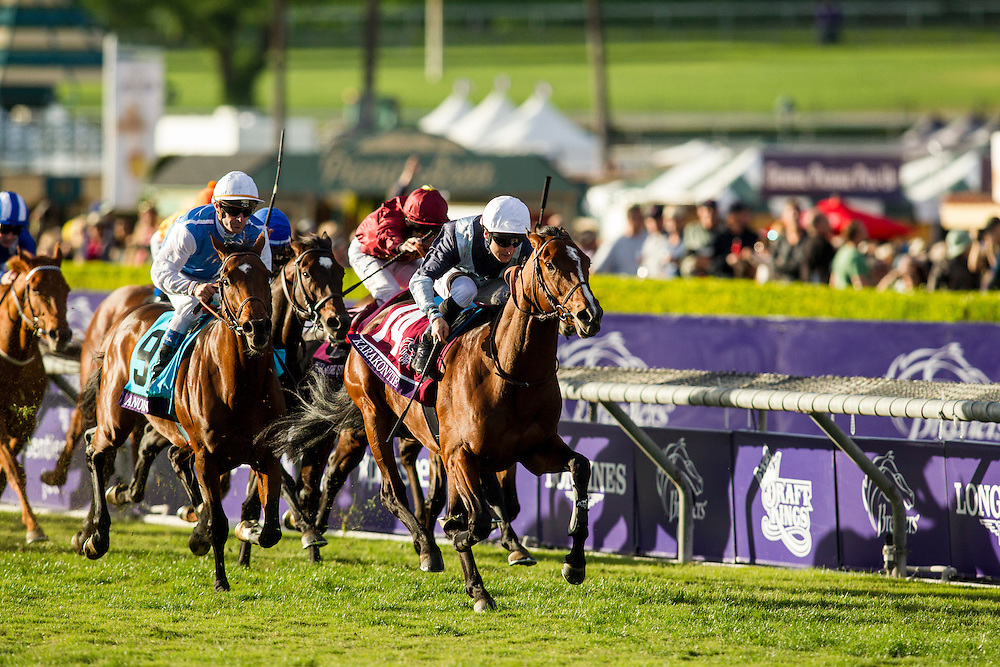 November 01 2014: Karakontie (JPN), ridden by Stephane Pasquier and trained by Jonathan Pease, wins the Breeders' Cup Mile (G1) at Santa Anita Park in Arcadia, California on November 1, 2014. Alex Evers/ESW/CSM