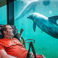 Nederland, Harderwijk, 4 juni 2016.<br /> <br /> Leo Jansen uit Blerick heeft de spierziekte ALS en heeft nog 1 wens om samen met zijn vrouw met de Wensambulance naar Dolfinarium Harderwijk te rijden om naar de dolfijnen te kijken.<br /> De stichting zorgt zich om het vervullen van wensen van ernstig zieke mensen. De wens wordt geheel kosteloos voor de wensbelever en volledig vrijwillig door een verpleegkundige en ambulancechauffeur uitgevoerd.<br /> <br /> Leo Jansen has ALS muscle disease and is last wish is to visit the Dolfinarium  in Harderwijk together with his wife.<br /> The foundation Wensambulance is run by volunteers and fullfills last wishes for free for seriously ill people.<br /> <br /> Foto: Jean-Pierre Jans1