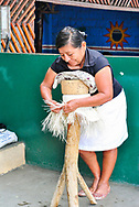 A woman weaving toquilla straw hat, known as Panama Hat.  Brimmed straw hat of Ecuadorian origin.  Montecristi.  Ecuador.