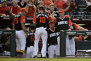 PHOENIX, AZ - AUGUST 27:  Chris Herrmann #10 of the Arizona Diamondbacks wearing a nickname-bearing jersey is congratulated by manager Torey Lovullo #17 after scoring on a wild pitch in the third inning against the San Francisco Giants at Chase Field on August 27, 2017 in Phoenix, Arizona.  (Photo by Jennifer Stewart/Getty Images)