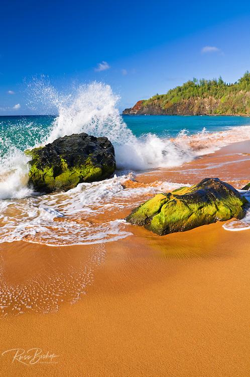 Surf crashing on lava rocks at Secret Beach (Kauapea Beach), Kilauea Lighthouse visible, Island of Kauai, Hawaii