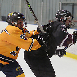 Staff photos by Tom Kelly IV<br /> Springfield's Mark Rogers (93) delivers a check to Garnet Valley's Ryan Hurley (43) during the Springfield, Garnet Valley hockey game on Friday night February 6, 2015 at Ice Works.