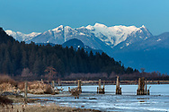 Winter view of Osprey Mountain and the Pitt River from the Poco Trail in Port Coquitlam, British Collumbia, Canada.