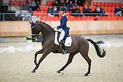 Stephanie Beek Peters - Bernardau<br /> KNHS Indoorkampioenschappen 2017<br /> © DigiShots