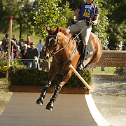 Corinne Ashton (USA) and Dobbin at the 2007 Wellpride American Eventing Championships in Wayne, IL