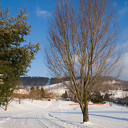Cross-country ski trail in Quechee, Vermont. Quechee Club.