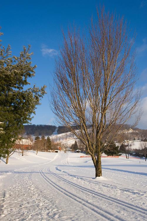 Cross-country ski trail in Quechee, Vermont. Quechee Club.