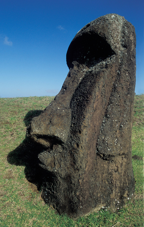 Giant Moai, huge statue made from Polynesians on Easter Island,Chile, South America