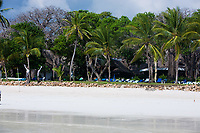 beautiful white sand diani beach near mombassa in kenya africa