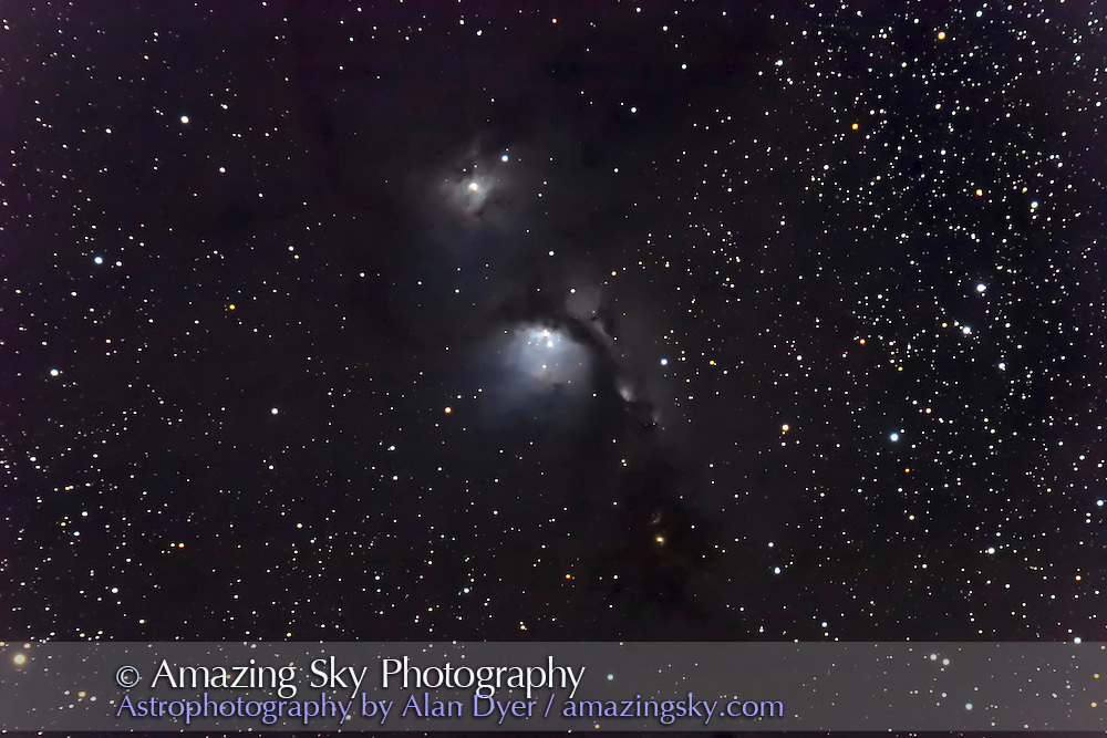 M78 and NGC 2071 (above) reflection nebulas in Orion. Stack of two 15-minute exposures at f.6 with 5-inch apo refractor and Canon 20Da camera. Some moonlight from setting moon. January 4, 2006.