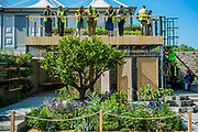 The Lemon Tree Trust Garden, Sponsor: The Lemon Tree Trust, Designer: Tom Massey and Contractor: Landscape Associates - The RHS Chelsea Flower Show at the Royal Hospital, Chelsea.
