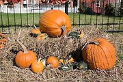 Missouri MO USA, Halloween decorations in Hermann, MO. October 2006