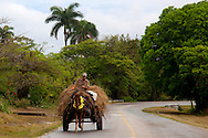 Horse and cart near Floro Perez,  Holguin, Cuba.