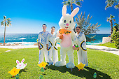 one and olny Palmilla Easter  bunny