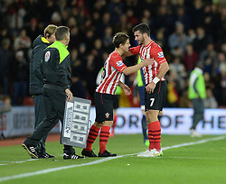 Southampton's Dominic Gape replaces Southampton's Shane Long - Photo mandatory by-line: Alex James/JMP - Mobile: 07966 386802 - 20/12/2014 - SPORT - Football - Southampton  - St Mary's Stadium - Southampton  v Everton - Football