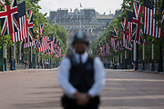 On US President Donald Trump's first day of a controversial three-day state visit to the UK by the 45th American President, a British Met Police officer secures the Mall, on 3rd June 2019, in London England.