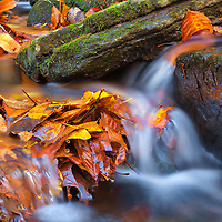 New England fall foliage framing one of the many Indian Hole Brook cascades downstream of Indian Well Falls in Shelton, Connecticut. This brook and Connecticut waterfall is located in Indian Well State Park is only a 25 minute drive from New Haven and rewards with this spectacular New England waterfall. <br /> <br /> Connecticut fall foliage photography images are available as museum quality photography prints, canvas prints, acrylic prints or metal prints. Prints may be framed and matted to the individual liking and decorating needs at:<br /> <br /> https://juergen-roth.pixels.com/featured/indian-well-state-park-juergen-roth.html<br /> <br /> All high resolution Connecticut photography images are available for photo image licensing at www.RothGalleries.com. Please contact me direct with any questions or request. <br /> <br /> Good light and happy photo making!<br /> <br /> My best,<br /> <br /> Juergen<br /> Prints: http://www.rothgalleries.com<br /> Photo Blog: http://whereintheworldisjuergen.blogspot.com<br /> Instagram: https://www.instagram.com/rothgalleries<br /> Twitter: https://twitter.com/naturefineart<br /> Facebook: https://www.facebook.com/naturefineart