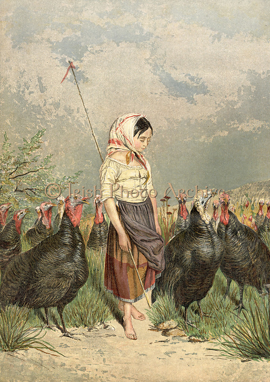 The Turkey Guardian: Turkeys were raised in Norfolk for the Christmas market, and children such as this little girl were employed to watch over the birds and keep the flock together.  Chromolithograph 1858.