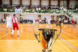 Trophy during basketball match between KD Ilirija and KK Mesarija Prunk Sezana in Last Round of 2. SKL  2016/17, on April 15, 2017 in GIB center, Ljubljana, Slovenia. Photo by Vid Ponikvar / Sportida