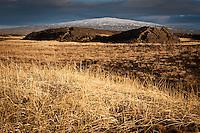 Hraun og Melgresi á Bláskógarheiðið. Skjaldbreiður í baksýn. Lava and Limegrass at Blaskogarheidi. Mount Skjaldbreidur in background.