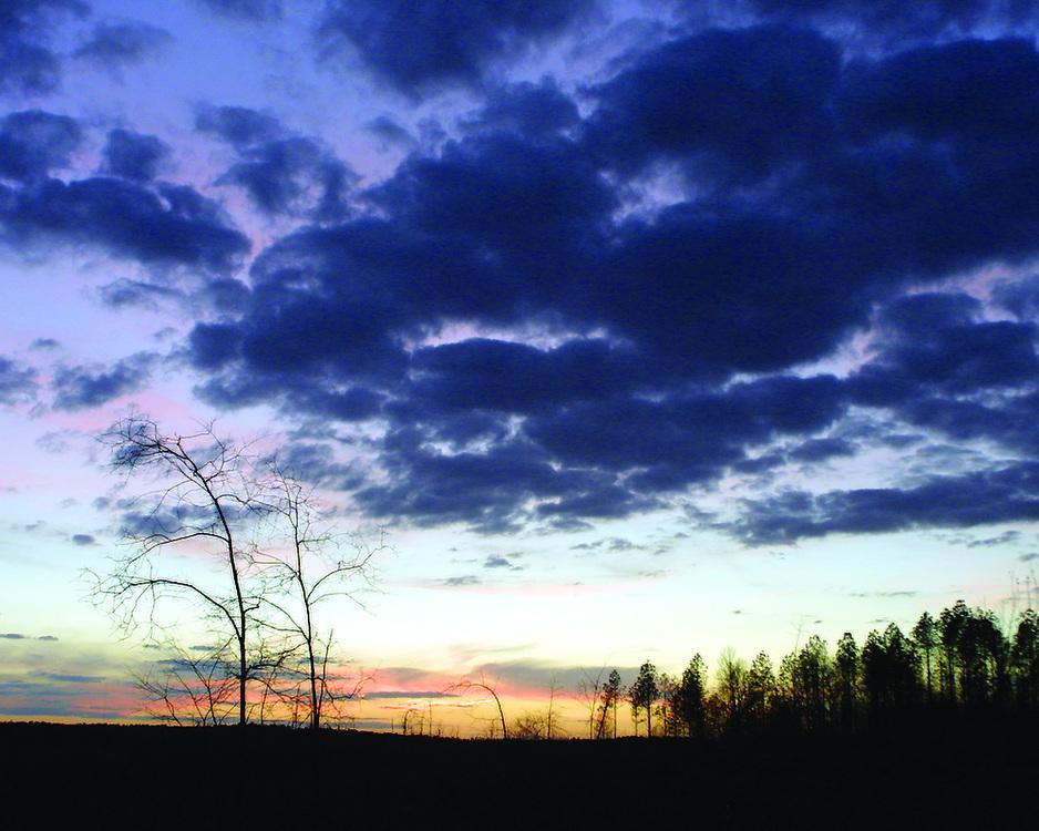 alabama, landscape, sunset, clouds, trees, pine road