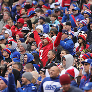 A San Francisco 49ers fan in the crowd during the New York Giants V San Francisco 49ers, NFL American Football match at MetLife Stadium, East Rutherford, NJ, USA. 16th November 2014. Photo Tim Clayton