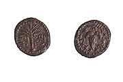 "Bronze Eleazr the Priest coin 132 AD. Left Palm Tree right bunch of grapes wit the inscription ""Year one of the redemption of Israel"