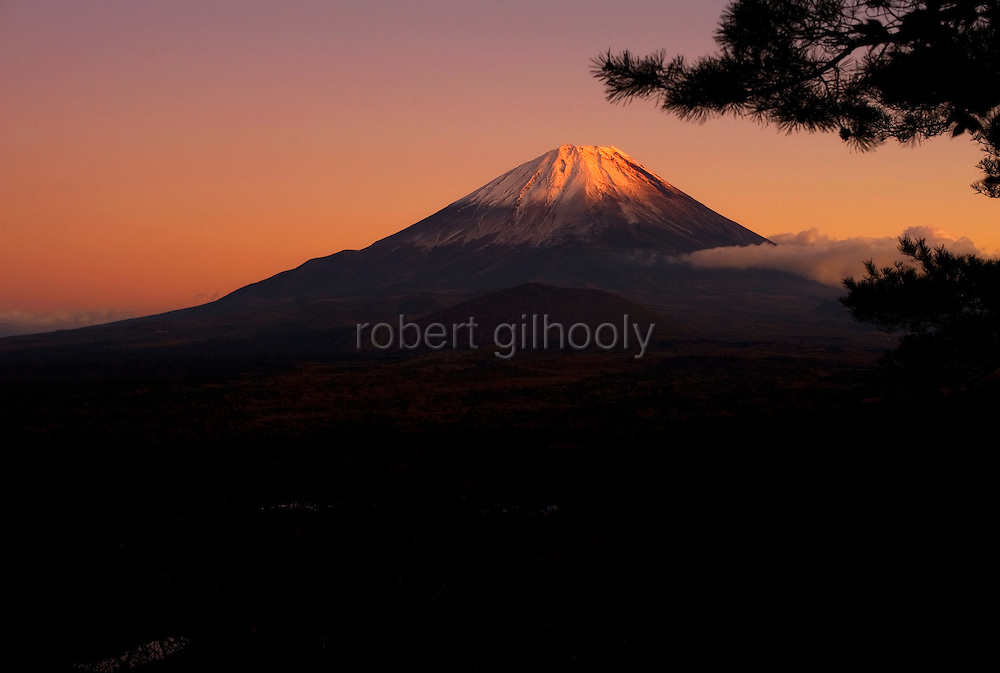 Aokigahara Jukai, better known as the Mt. Fuji suicide forest, sprawls beneath Mount Fuji in Yamanashi Prefecture, west of Tokyo, Japan on 03 Nov. 2009. ..