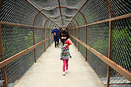 A young family with their dog walking the Kootenai Falls Trail on an overpass over the BNSF railroadd as a train passes underneath. Lincoln County, northwest Montana.
