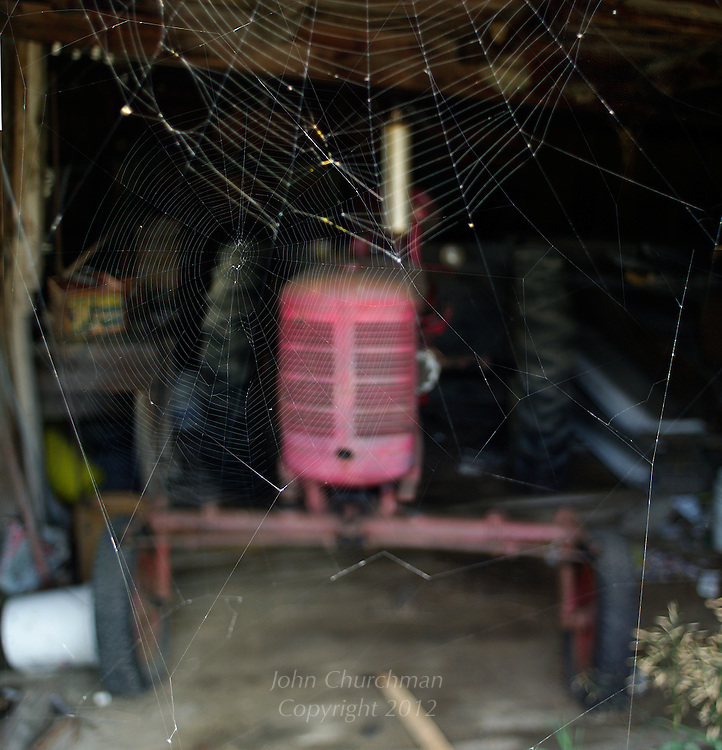 Old tractor with spider webs in barn